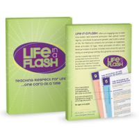 life-in-a-flash-box